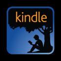 Kindle Format