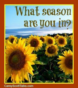 what season